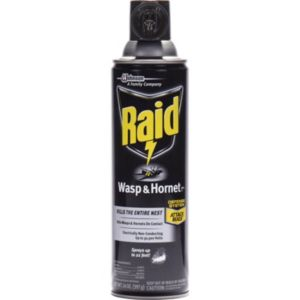 668006EA 14 oz Aerosol Wasp & Hornet Killer