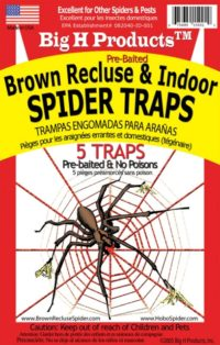 ACEBR15001 Brown Recluse & Indoor Spider Traps - pack of 12